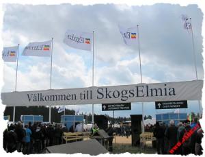 a_welcome_to_skogselmia_2011